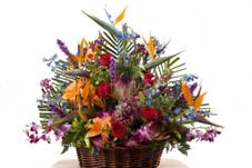 bird of paradise flower arrangement