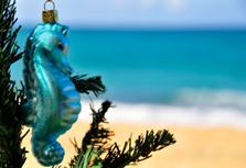 Tropical Christmas Decorations