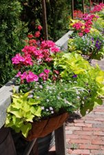Deck Railing Planter