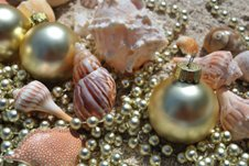 Seashell Christmas Ornaments